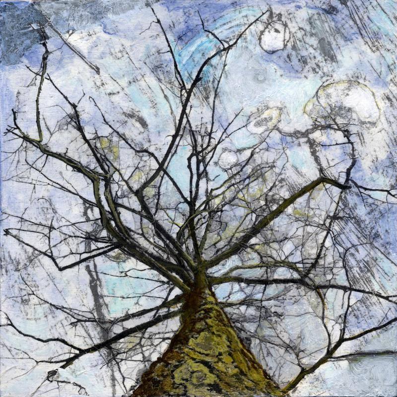 Josephine Radoman - Under the Octopus Tree - 8x8 - Acrylic/Mixed Media Transfer