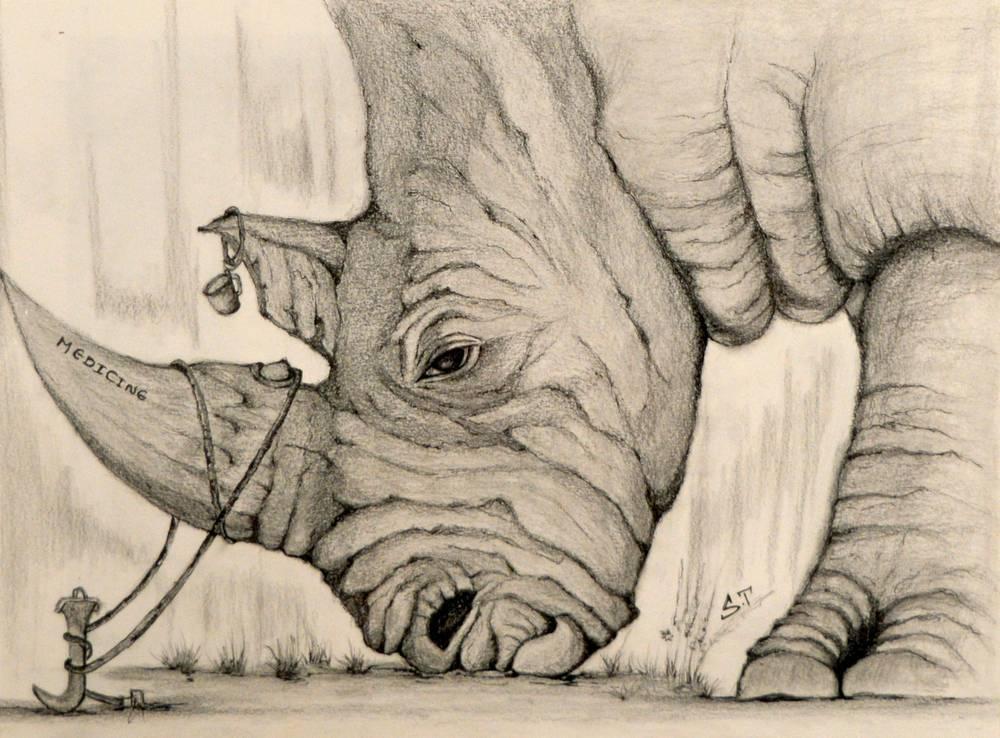Supreetha Tirukkovalluru - Rhino Horn - 12x15 - Pencil and Ink Drawing on Canson Paper